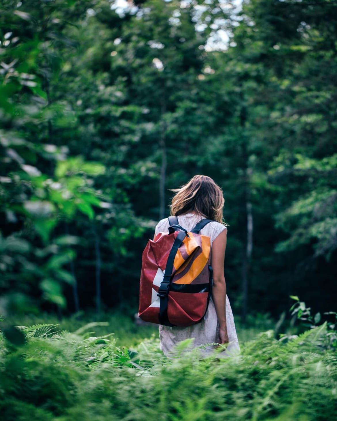 gonewithfreitag_forest.jpg