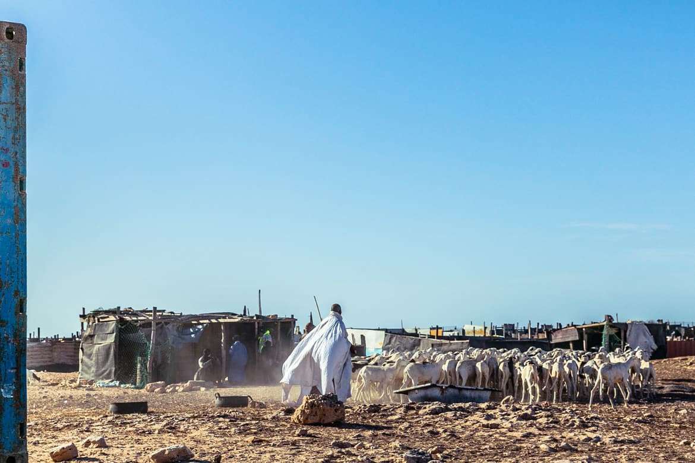 beyond-africa-surf-movie_beyond_mauritania_nouadhibou_134_c_lupi_spuma.jpg